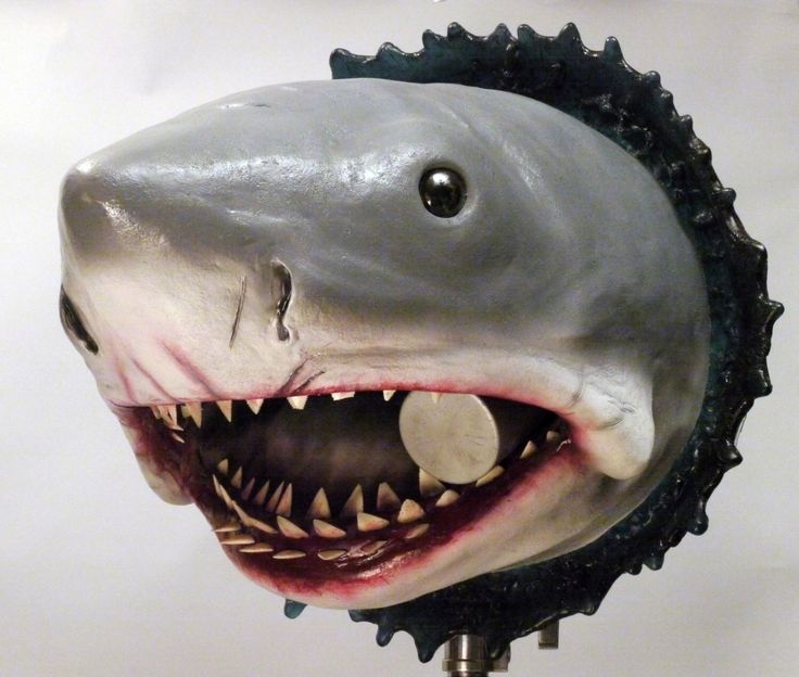 large Bruce the shark Jaws wall hanging bust prop by Imagemotor on Etsy https://www.etsy.com/listing/239240655/large-bruce-the-shark-jaws-wall-hanging
