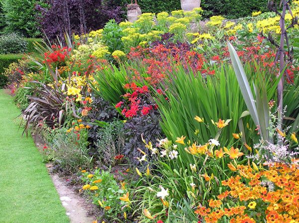 Oxford University botanical garden herbaceous border
