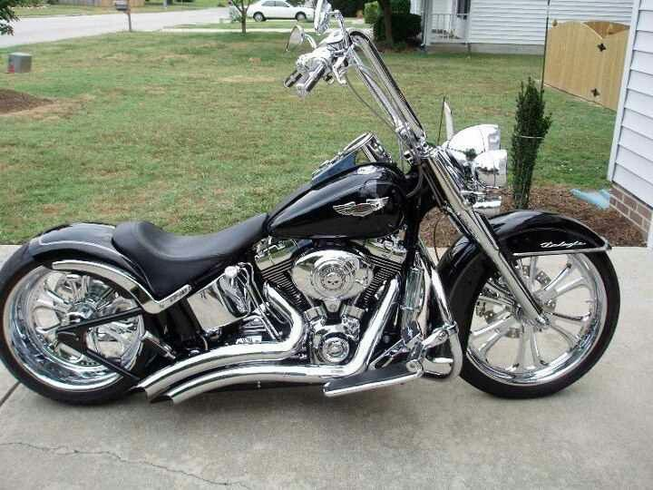 Custom Softail  I need a seat for my woman, and that'd be about it.  That's a beautiful ride.