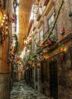 Voy a caminar a través de las calles bonitas en Toledo. en el día del corpus...donde huele a tomillo y romero