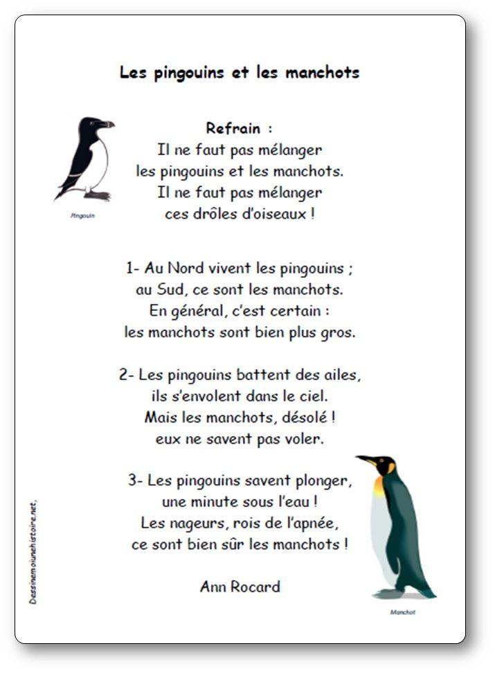 Il ne faut pas mélanger les pingouins et les manchots ! Une comptine d'Ann Rocard pour apprendre à distinguer les pingouins et manchots.