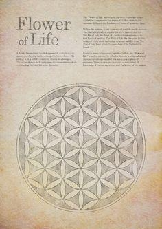 Flower of life, sacred geometry