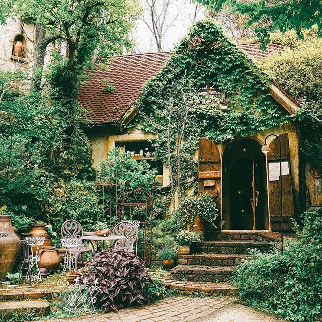 This place is like a dream  thank you for suggesting it @ajeu sayang  Nukumori no mori ぬくもりの森, Hamamatsu #npmap #npmgoesjp #nukumori #hamamatsu #japan