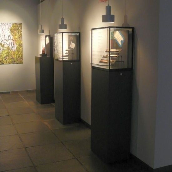Quality Museum Display Cases & Cabinets | Access Displays  Lit from above