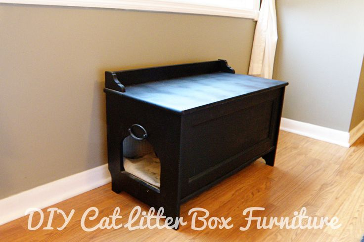DIY Cat Litter Box Furniture. Buy a toy box from some where cheap like IKEA. Cut a hole on the side and put a cat box inside. Clean regularly.