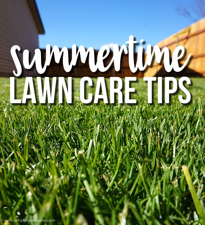 Summertime Lawn Care Tips Summer Lawn Care Lawn Care Tips Lawn Care