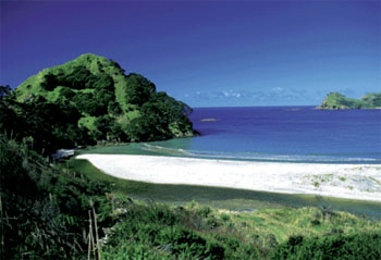 Great Barrier Island... Best place if you want a combination of beautiful clear blue water, white sand beaches and distinctive native bush - Coromandel, New Zealand
