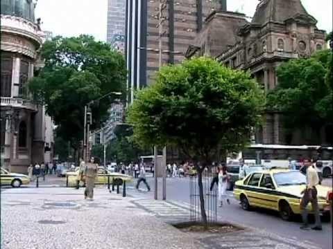 """O programa """"Um Pé de Quê?"""" fala sobre o Oiti, a mais urbana das árvores. Sabia que no Centro do Rio, bem ali na Cinelândia, está cheio de oitizeiros?"""