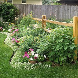 Lots of cool edging ideas