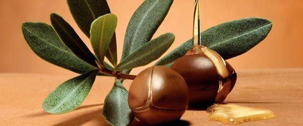 EL ORO LÍQUIDO DE MARRUECOS Para hablar del Aceite de Argán nos trasladamos a uno de los lugares más mágicos del mundo, Marruecos, de donde proviene el árbol Argania Espinosa de cuyas semillas se obtiene este aceite rico en vitamina E y otros antioxidantes. Al igual que el aceite Rosa Mosqueta promueve ...  http://queltic.com/blog/aceite-de-argan-el-oro-liquido-de-marruecos/?utm_source=pinterest&utm_medium=post-organic&utm_campaign=aceite-argan  #aceiteargan #argan #marruecos #oroliquido