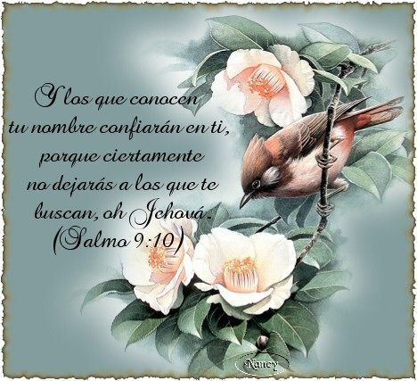 AMO A MI DIOS on Pinterest | Dios, Facebook and Frases