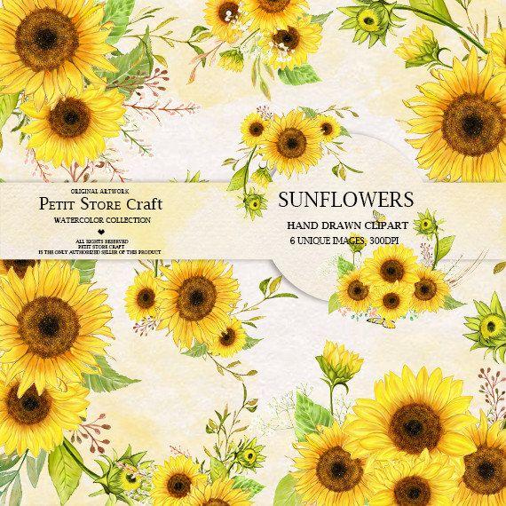 Sunflower Watercolor Flower Clipart Hand Painted DIY Clip Art Handpainted Floral