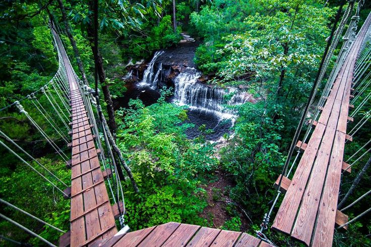 Zip Quest in Fayetteville, NC offers zip lining and canopy tours