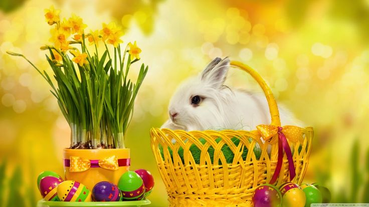 Easter Greetings Messages WhatsApp SMS Quotes Wallapaper   Kandathum Kettathum - Kerala God's Own Country Information, News, Photos, Videos, Travel Guide