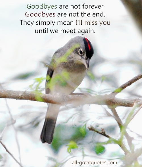 Best Facebook Sympathy Card Messages, Beautiful Condolences Cards to share with friends when required - ALL - FREE MEMORIAL CARDS http://www.all-greatquotes.com/all-greatquotes/category/in-loving-memory/ FREE IN LOVING MEMORY CARDS FACEBOOK https://www.facebook.com/sympathyandcondolences?ref=hl TAGS - #remembrance #inlovingmemory #memorial