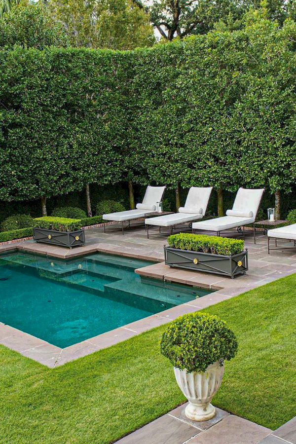 46 Wonderful Backyard Pool Ideas For You And Your Family Page 10 Of 46 Lasdiest Com Daily Women Blog Swimming Pools Backyard Backyard Pool Landscaping Backyard Pool Designs
