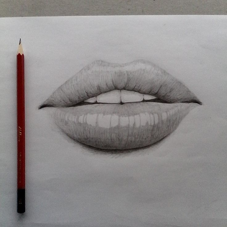 Study of lips using a 2H pencil.