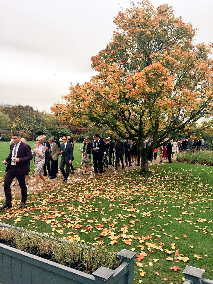 "Gaynes Park on Twitter: ""Autumn and the guests coming back into the Orangery having made a guard of honour for the bride + groom. #wedding https://t.co/ihOyjMJRhv"""