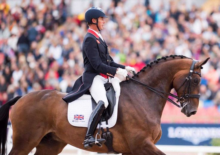 Carl Hester MBE --Only one more day Barney and it's your favourite! Freestyle today at 4.40 Swedish time!
