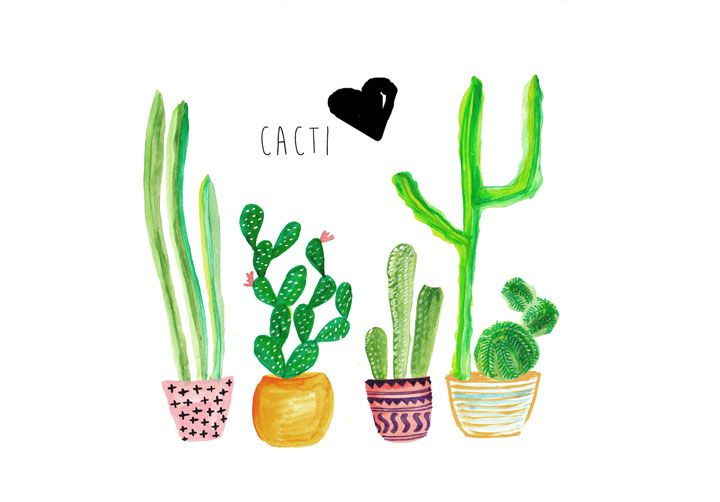 Current Trends Cacti Cactus Backgrounds Cute Computer Backgrounds Cactus