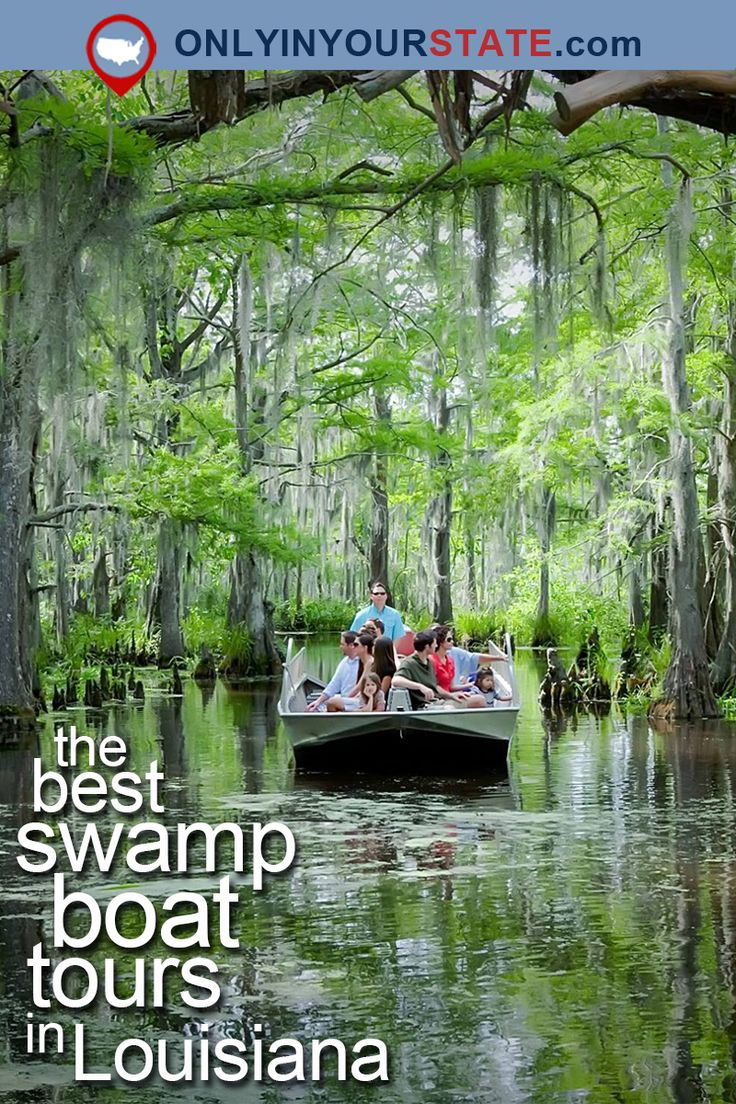 11 Swamp Boat Tours In Louisiana That Will Make You Fall
