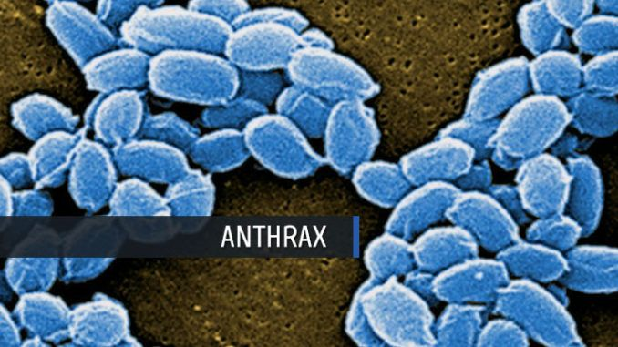 Single-Dose Anthrax Vaccine Nasal Spray Clinical Trial (Global Biodefense)  -- Anthrax Infection from Bacillus anthracis spores