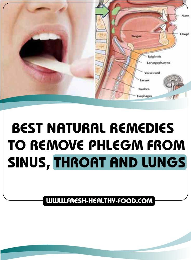 Persistent cough is a symptom of bacterial and viral infection of the respiratory organs that is followed by thick green secretion in the sinuses, throat and lungs. This secretion can be very hard to expel and it can cause serious complications...