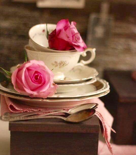 tea cup/still life