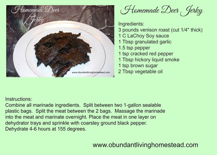 Homemade Deer Jerky- Its supposed to taste just like Wild Bills Beef Jerky!