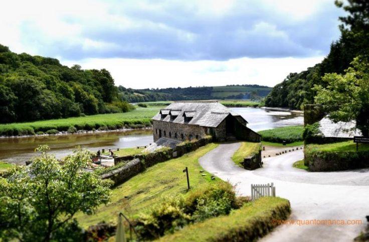 Il Somerset, il Devon e Cornovaglia sono dei luoghi incredibili a cui la natura ha regalato molto: paesaggi mozzafiato, belle spiagge, un clima mite e una ricca vegetazione. In tanta bellezza sono stati costruiticastelli (infestati ) e antiche dimore nobiliari, ma ancheromantici borghi di pescatori e bellissimi giardini. Volete sapere se LA CORNOVAGLIAè una meta …