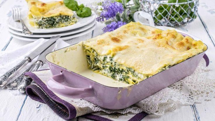 Lasagne ricotta e spinaci, ricetta vegetariana, primo piatto italiano, ricetta