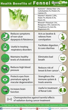Health Benefits of Fennel | Organic Facts