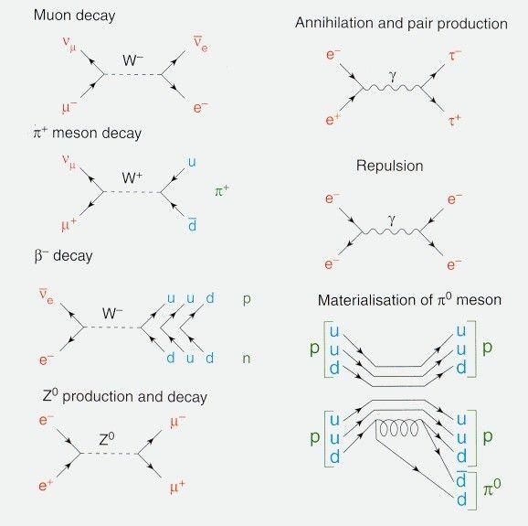 1000  ideas about feynman diagram on pinterest