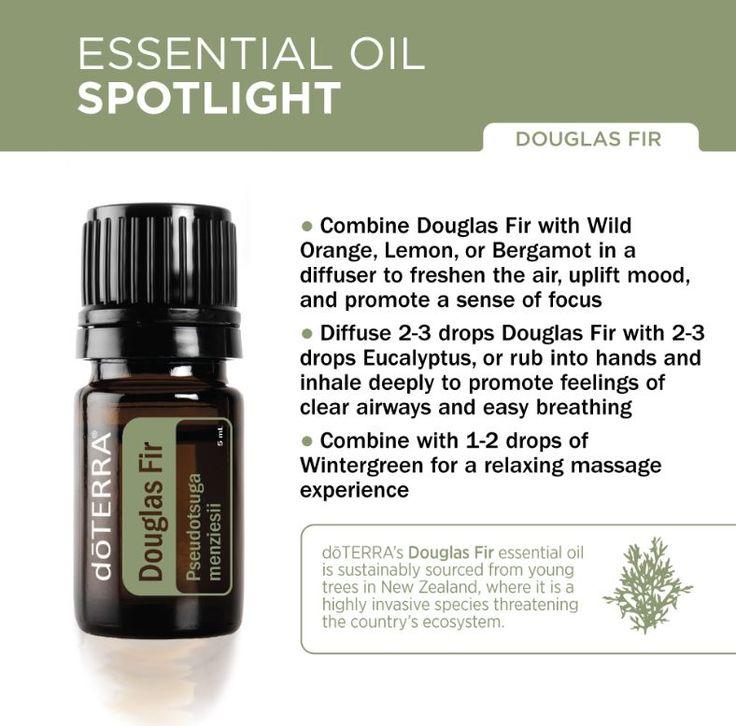 doTERRA Douglas Fir Essential Oil Spotlight