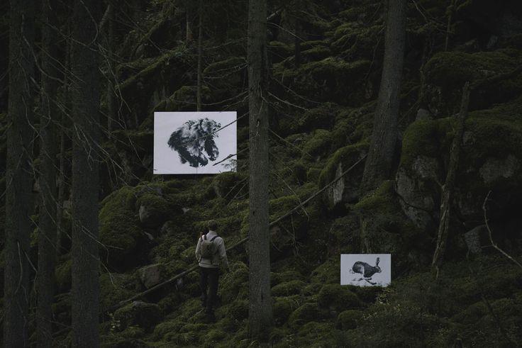 Forest Greetings by Teemu Järvi Illustrations
