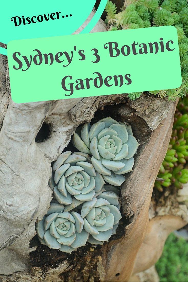 Sydney Attractions - The 3 Botanic Gardens of Sydney