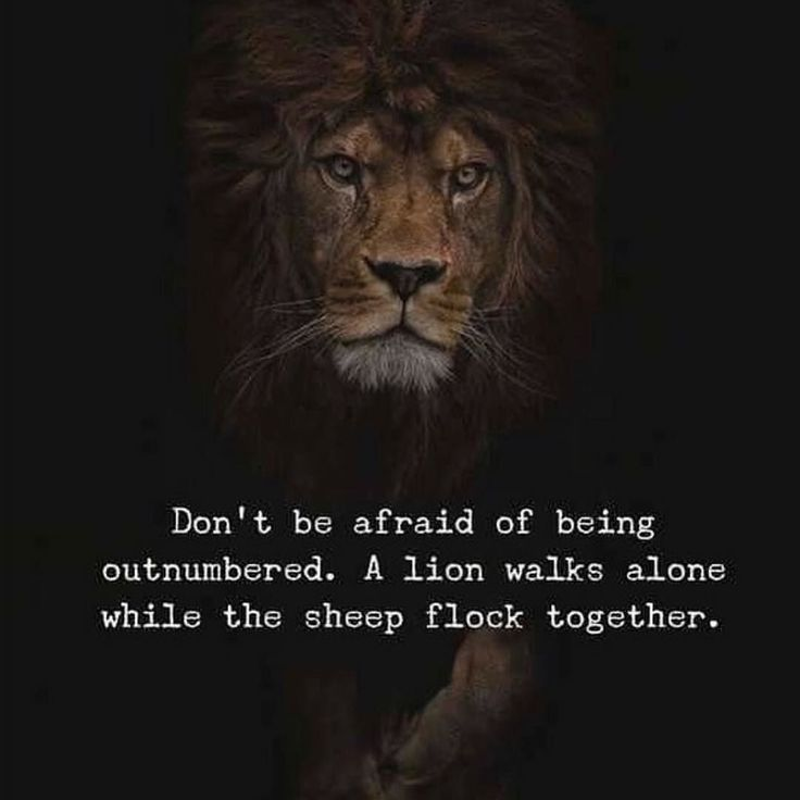 COWARDS....come in packs! Ever noticed that? They NEED an audience. The strong are more than willing to walk alone! #success #quotes #motivation #inspiration #fitness #keepgoing #health #driven #freedomofchoice #a3dlife #realtalk #lifelessons