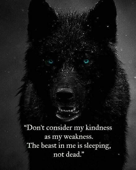 Warriors Come Out And Play Quote: 25+ Best Wolf Pack Quotes Ideas On Pinterest