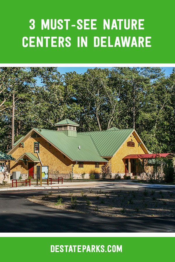 Did You Know That Delaware State Parks Has A Nature Center In Each Of Delaware S Three Counties Our Nature C Delaware Beaches State Parks Delaware Attractions