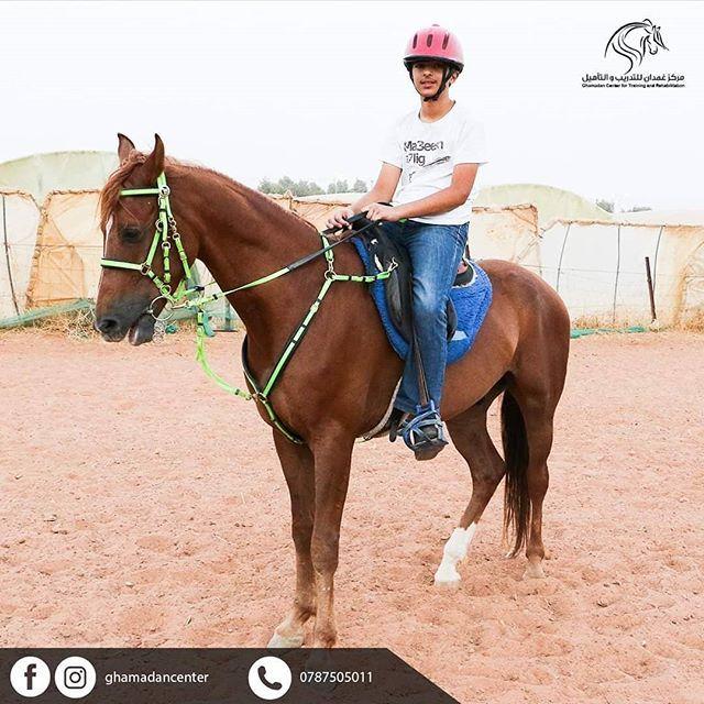 مركز غمدان للفروسية برامج تدريبية للمبتدئين بأجواء رائعة وميدان ضخم مع طاقم تدريبي محترف مركز غمدان للفروسية برامج تدريبية للمبتدئين ب Horses Animals Style