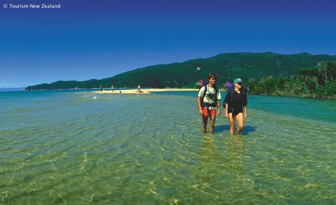 Summer in Abel Tasman National Park