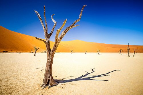 awesome Namibia Check more at http://www.discounthotel-worldwide.com/travel/namibia-27/