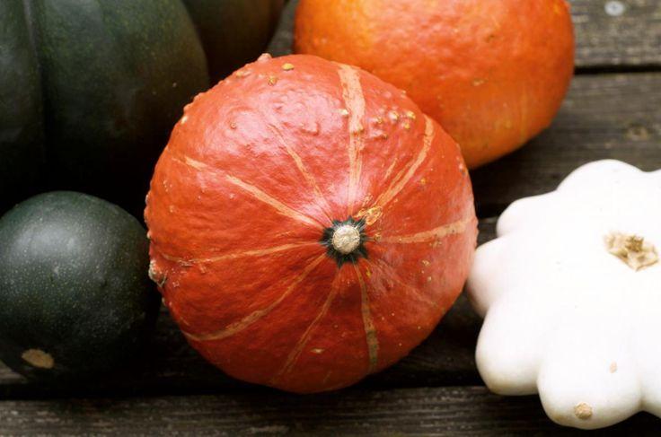 Kleine Kuerbiskunde: Hokkaido, Muskatkürbis, Sweet Dumpling, Butternut, Patisson