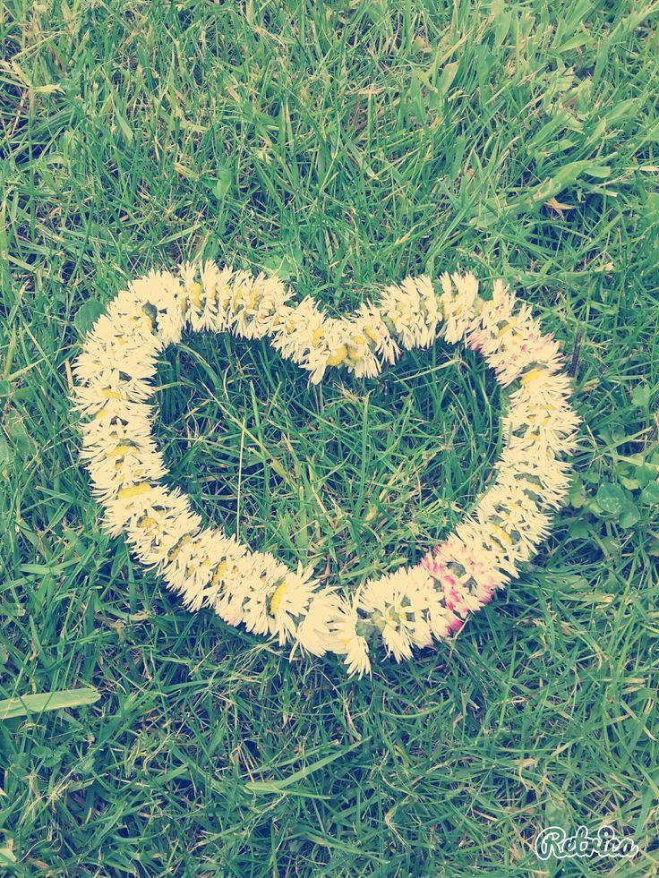 Coeur en paquerettes ❤