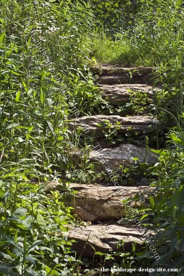 Woodland gardens stairs Ramey Ranch Resources Pinterest