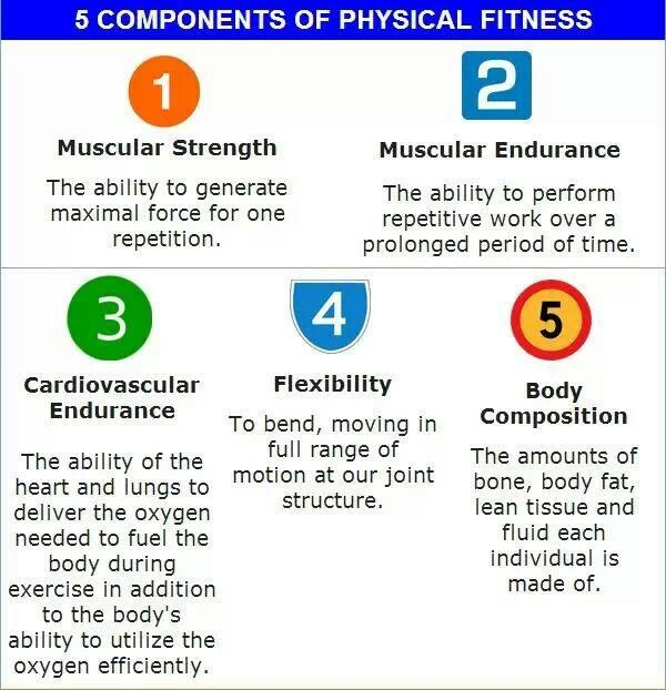 Essay On Fitness Components Fitness Components Of Volleyball Essay Sample Science Essays also Powerpoint Presentations Online  Research Essay Papers