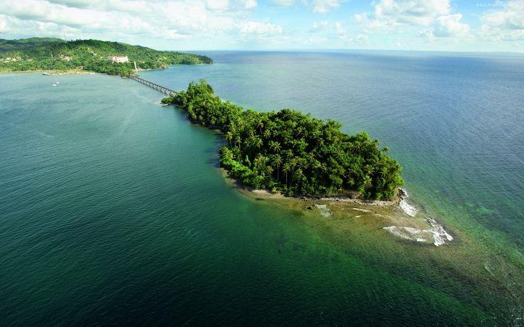 Morze, Wyspa, Palmy