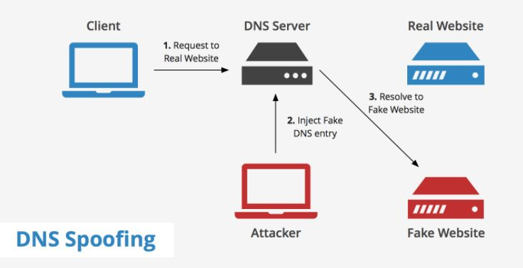 A DNS spoofing attack is just as easy to execute as a DHCP poisoning attack. All traffic from the victim is forwarded through the attacker's fake DNS service and redirected so that all requests for the Internet or internal sites land at the attacker's site, from which the attacker can collect...