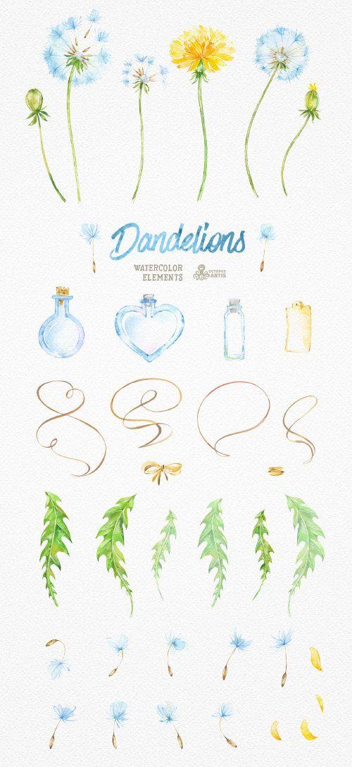 Dandelions 37 Watercolor Elements. Clipart от OctopusArtis на Etsy