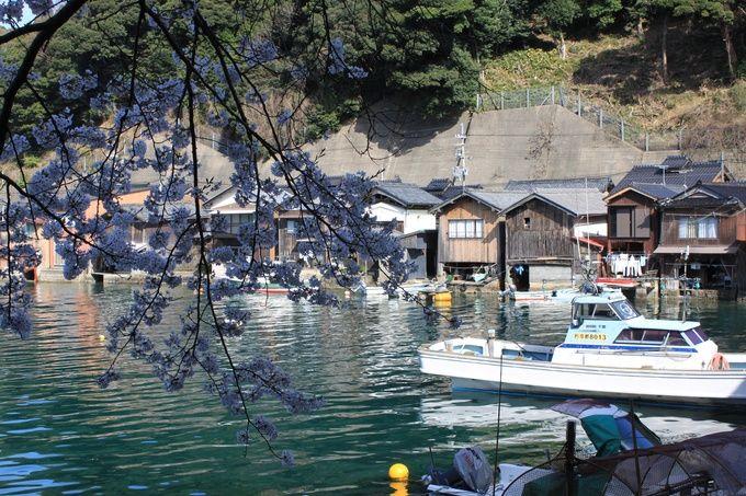 あの京都が本気で町おこし?今注目される「海の京都」の実態とは | RETRIP